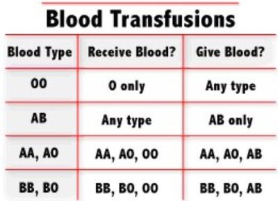 Illustration of Can Blood Type A Receive A Blood Transfusion From Group O +?