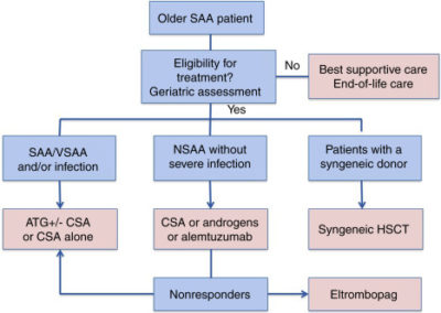 Illustration of Treatment For Patients With Aplastic Anemia?