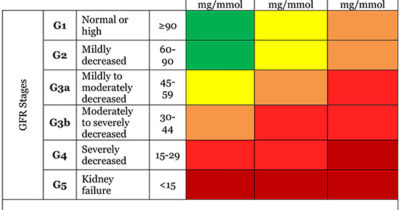 Illustration of Blood Urine And Creatinine Levels Are High At The Age Of 22 Years, Can It Go Down?