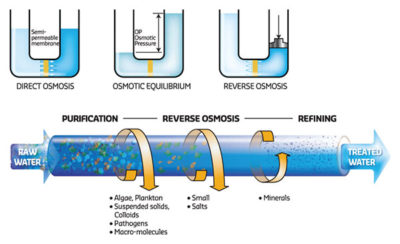 Illustration of How Does The Reverse Osmosis Water Affect The Health Of The Body?