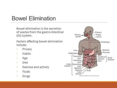Illustration of At What Age A Person Can Be Affected By Excretion System Disorders?