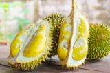 How To Deal With Ingested Durian Seeds?
