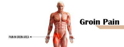 Illustration of Pain In The Groin Area.?