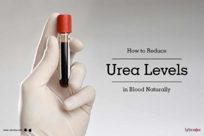 Illustration of How To Reduce Ureum Levels In The Blood?