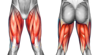 Illustration of Pain And Tightness In The Thighs And Leg Muscles?