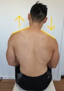 Illustration of The Cause Of The Shoulder Feels Grow Taller?