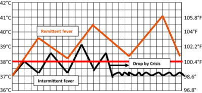 Illustration of The Results Of Blood Tests After Experiencing Fever Fluctuate For 2 Weeks?