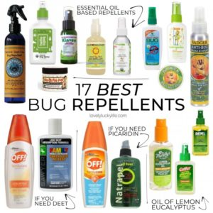 Illustration of Safe Mosquito Repellent For Babies?
