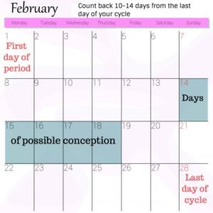 Illustration of The Fertile Period Does Not Match The Calculation Date?