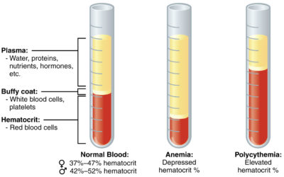 Illustration of TB Free Health Test Whether To Take Blood Samples?