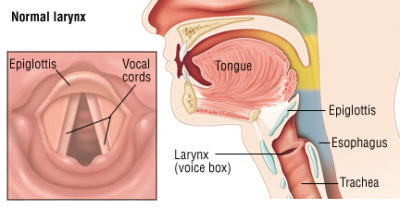 Illustration of Are There Any Vocal Cords Surgery For Strokes To Talk Again?