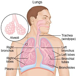Illustration of Vomiting Discharge And Lung Pain?