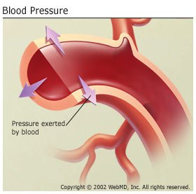 Illustration of Possible Drop In Blood Pressure?