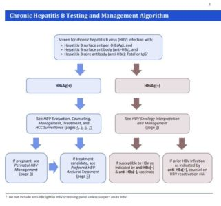 Illustration of Prevention Of Hepatitis B In Fetuses And Couples?
