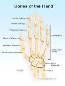 Illustration of How Long Is The Recovery Period Of The Broken Finger Joint?