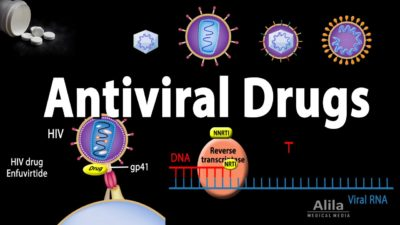 Illustration of An Explanation Of Antiviral Drugs And Vitamin B Complex?