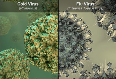 Illustration of Flu Has Been Going On For 2 Weeks And Greenish Mucus Smells?