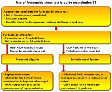 Illustration of Consumption Of Furosemide In Patients With Kidney Failure?