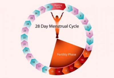 Illustration of The Possibility Of Pregnancy When Menstruating?