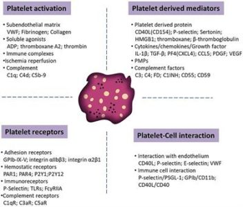 Illustration of Disease With Symptoms Of Increased Platelets And LEDs?