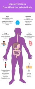 Illustration of How To Deal With Stomach Acid And High Cholesterol?
