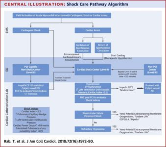 Illustration of Therapy To Treat Cardiogenic Shock?