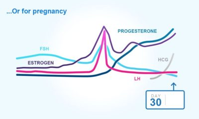 Illustration of Taking Hormones If You Can Get Pregnant.?