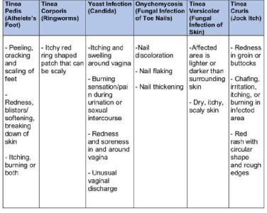 Illustration of Types And Types Of Treatment For Fungal Infections?