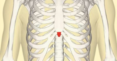 Illustration of The Area Of the Sternum Feels Painful Like Being Punctured?