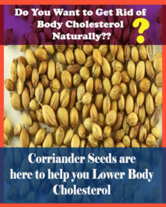 Illustration of The Effectiveness Of Cholesterol-lowering Herbs?