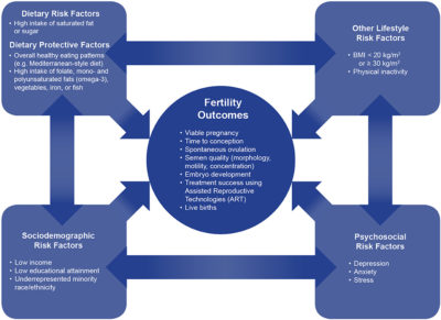 Illustration of Frequency Of Intimate Relationships And Nutrition Needed For Pregnant Programs?