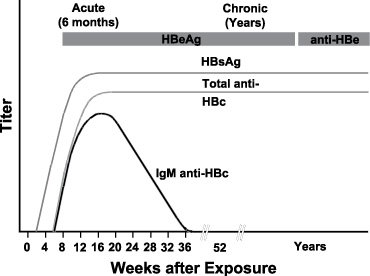 Illustration of Explanation Of The Results Of HBRE Reactive, Anti HBE Nonreactive?