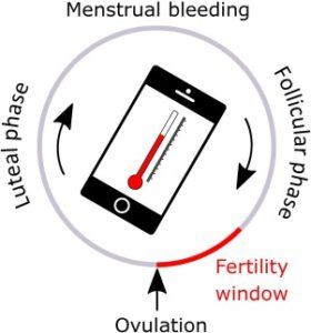 Illustration of The Relationship Between Contraceptive Use And Measuring Body Temperature?