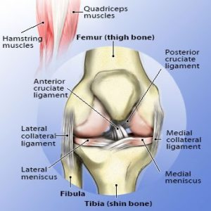 Illustration of Proper Handling Of Knee Pain That Makes It Difficult To Sit Bent?