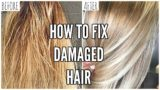 How To Deal With Damaged Hair To Be Healthy Again?
