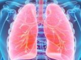 Handling For Fluid-submerged Lungs And Swollen Heart?
