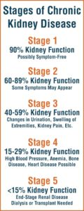 Illustration of How To Deal With Stage 4 Kidney Damage?