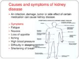 Causes And Treatment Of Kidney Disease?