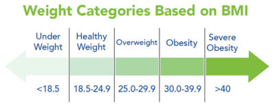 Illustration of Knowing The Causes Of Obesity?