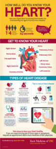 Illustration of Solutions To Overcome Heart Valve Disease Complications Of Hypertension?
