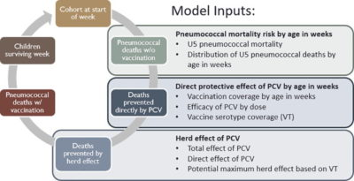 Illustration of Effects Of Incomplete Vaccine Administration?