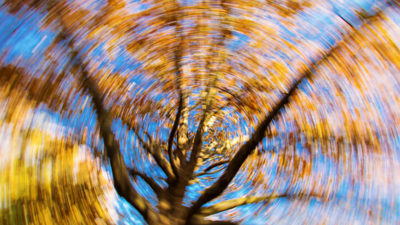Illustration of Dizziness Spinning In The Middle Of The Night Until You Wake Up From Sleep?