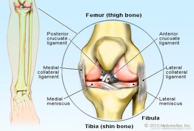 Illustration of Speed up The Healing Process Of Knee Injuries?
