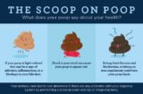 More Frequent Bowel Movements And Bowel Movements And How To Lose Weight?