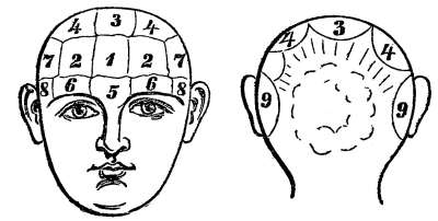 Illustration of Overcoming Lumps On The Head And Festering?