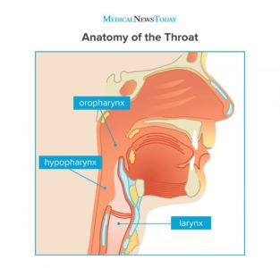 Illustration of The Difference Between Throat Cancer And Internal Disease?