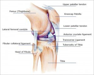 Illustration of Joint Pain Has Not Gone Away For 4 Months?