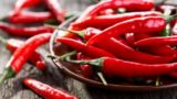 Vomiting After Excessive Consumption Of Chilies And Nausea In Ulcer Sufferers?