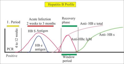 Illustration of The Results Of Reactive Hepatitis B Examination After Being Pricked By A Needle Used By The Patient?