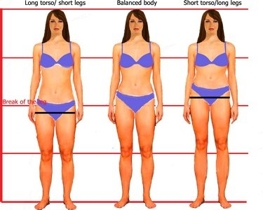Illustration of Why Is My Body Getting Shorter?